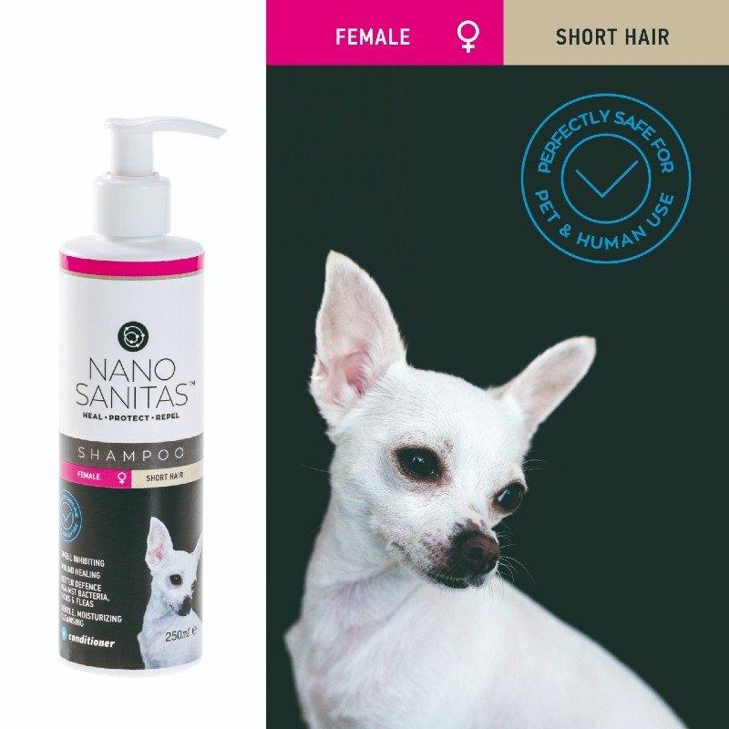Nano Sanitas Σαμπουάν για Θηλυκούς Κοντότριχους Σκύλους 250ml ΒΟΥΡΤΣΕΣ- ΠΕΡΙΠΟΙΗΣΗ - ΣΑΜΠΟΥΑΝ