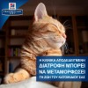 Hill's Prescription Diet c/d Metabolic Urinary Stress για Γάτες Με Κοτόπουλο 1,5kg ΓΑΤΕΣ