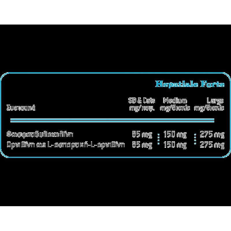 Hepatiale Forte Ηπατοπροστατευτικό συμπλήρωμα διατροφής για μικρόσωμους σκύλους και γάτες 40 κάψουλες ΘΕΡΑΠΕΥΤΙΚΑ ΣΚΕΥΑΣΜΑΤΑ ΣΚΥΛΟΥ