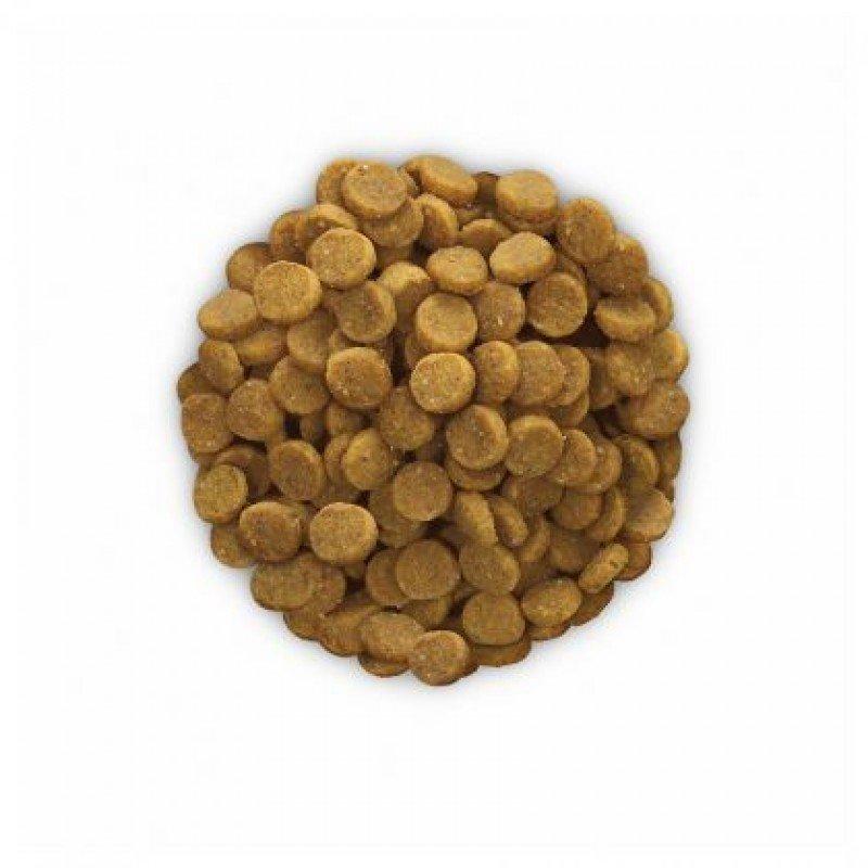 Hill's Prescription Diet k/d Canine Kidney Care Για Σκύλους 2kg