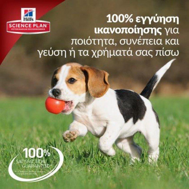 Hill's Science Plan Puppy Healthy Development Large Breed Για Σκύλους Με Κοτόπουλο 14,5kg ΞΗΡΑ ΤΡΟΦΗ ΣΚΥΛΟΥ