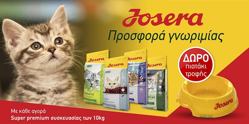 e9f0e14ee725 Γατοτροφές – Ξηρά Τροφή Για Γάτες